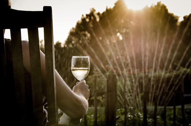Cómo enfriar vino de forma eficaz